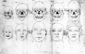 Dibujos de Blumenbach.