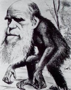 darwin-caricatura